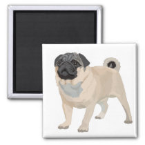 Adorable Pug Magnet