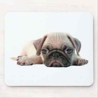 adorable pug puppy mouse pad