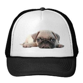adorable pug puppy trucker hat