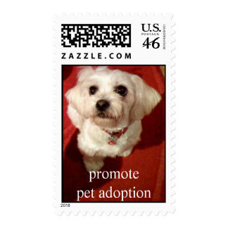 Adorable pup,   Adopt a dog today stamp - mutt