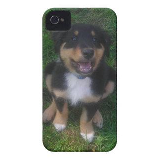 Adorable Puppy Blackberry Bold  Case