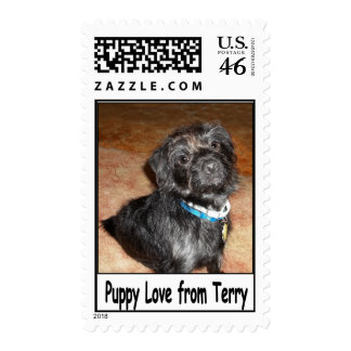 "Adorable ""Puppy Love From Terry"" Stamp"
