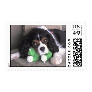 Adorable Puppy Postage
