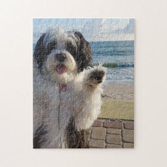 Adorable puppy waving on the beach jigsaw puzzle