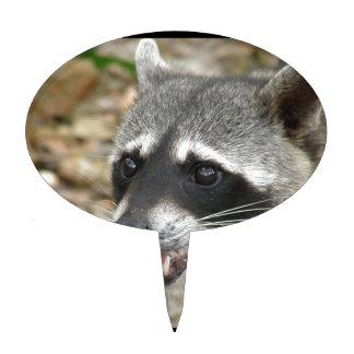 Adorable Raccoon Cake Topper