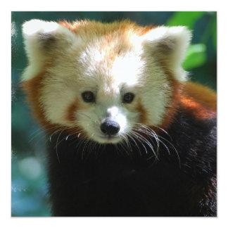 Adorable Red Panda Invitations