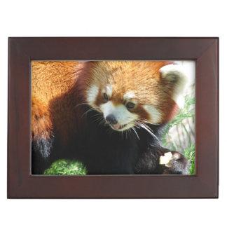 Adorable Red Panda Memory Box