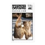 """Adorable """"Reindeer"""" Chipmunk Postage"""