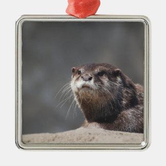 Adorable River Otter Christmas Ornaments