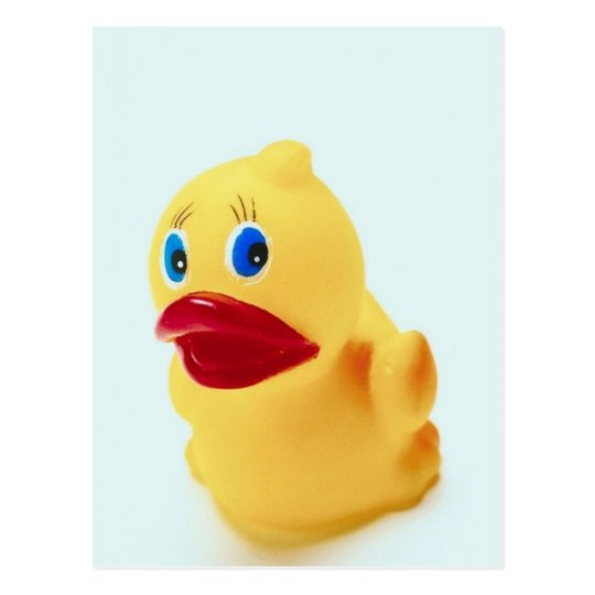 Adorable Rubber Duck Postcard