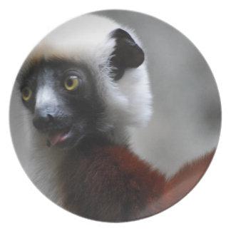 Adorable Safika Lemur Plates