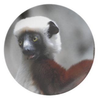 Adorable Safika Lemur Dinner Plate