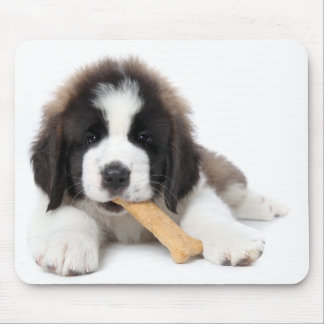 Adorable Saint Bernard Puppy Chewing on a Dog Bone Mouse Pad
