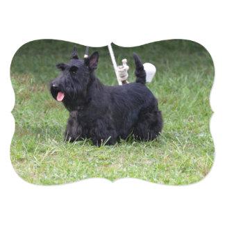 Adorable Scottish Terrier 5x7 Paper Invitation Card