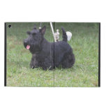 Adorable Scottish Terrier iPad Air Cover
