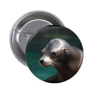 Adorable Sea Lion Button