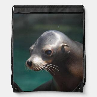 Adorable Sea Lion Cinch Bags