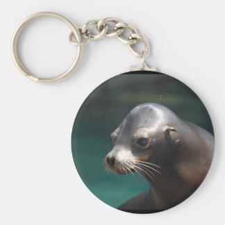 Adorable Sea Lion Key Chains
