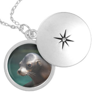 Adorable Sea Lion Locket Necklace