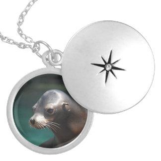 Adorable Sea Lion Necklaces