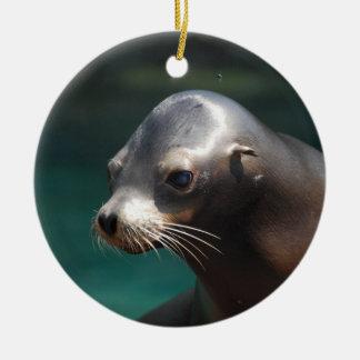 Adorable Sea Lion Ornaments