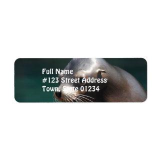 Adorable Sea Lion Return Address Label