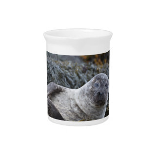 Adorable Seal Beverage Pitchers