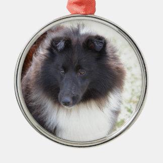 Adorable Sheltie Metal Ornament