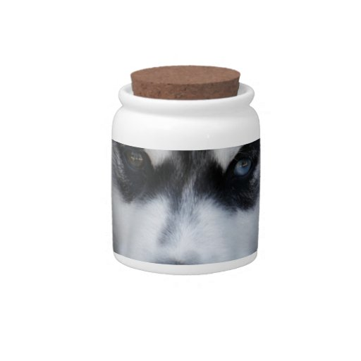 Adorable Siberian Husky Sled Dog Puppy Candy Jars