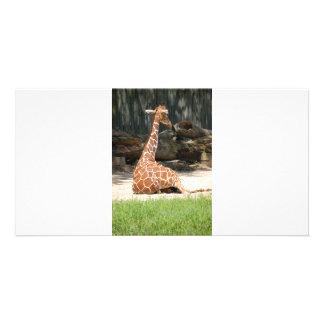 Adorable Sitting Giraffe Card