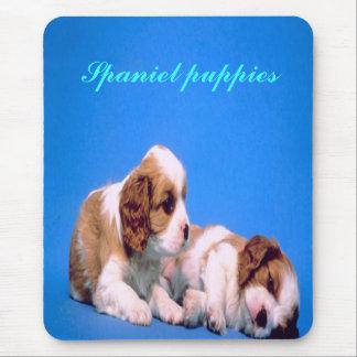 Adorable spaniel-puppies, mousepad