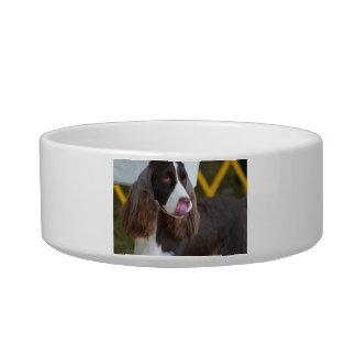 Adorable Springer Spanial Bowl