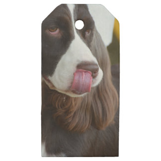 Adorable Springer Spanial Wooden Gift Tags