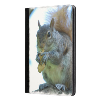 Adorable Squirrel iPad Air Case