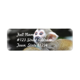 Adorable Squirrel Monkey  Mailing Labels