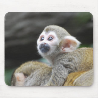 Adorable Squirrel Monkey  Mouse Pad