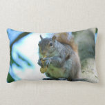 Adorable Squirrel Throw Pillow