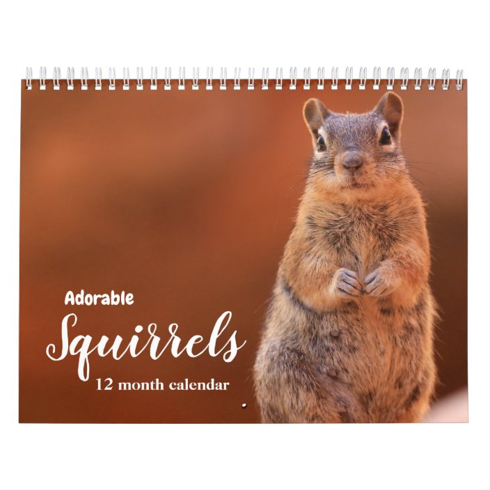 Adorable Squirrels 2021 Calendar | Zazzle.com