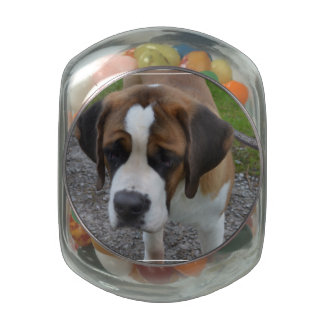 Adorable St Bernard Glass Jar