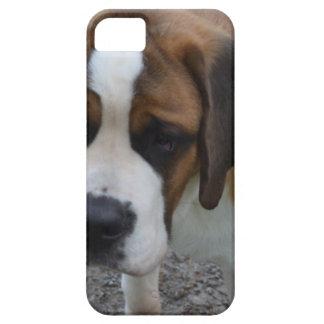 Adorable St Bernard iPhone SE/5/5s Case
