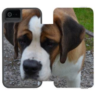 Adorable St Bernard Wallet Case For iPhone SE/5/5s