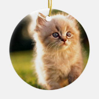 Adorable Stop Motion Kitten Ceramic Ornament