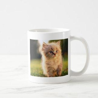 Adorable Stop Motion Kitten Coffee Mug