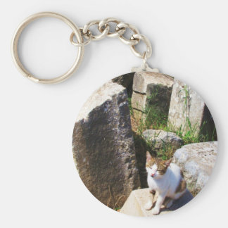 Adorable stray cat living in the ruins of Ephesus Keychain