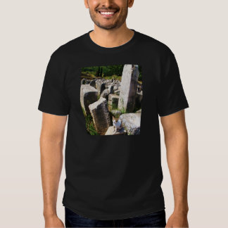 Adorable stray cat living in the ruins of Ephesus T Shirt