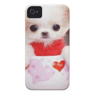 adorable teacup puppy iPhone 4 covers