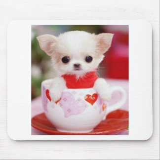 adorable teacup puppy mouse pad