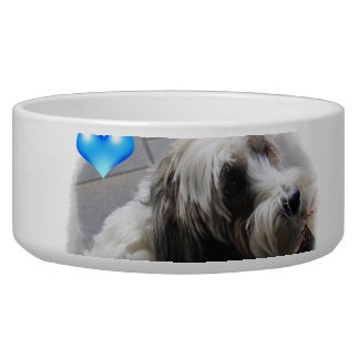 Adorable Tibetan Terrier with a heart dog food bow Bowl