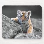 Adorable Tiger Cub Mousepad