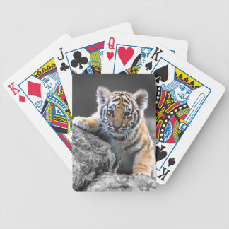 Adorable Tiger Cub Playing Cards